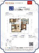 碧桂园润杨溪谷3室2厅2卫120平方米户型图