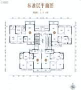 碧桂园・凤凰湾91--103平方米户型图