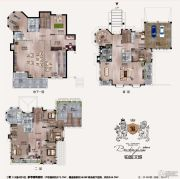 铂金汉城0平方米户型图