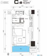 广晟・江山帝景1室1厅1卫43平方米户型图
