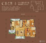 八桂绿城0室2厅3卫0平方米户型图