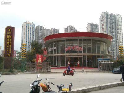 阳柳・新河湾