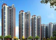 广基・自由星城实景图