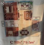博睿国典2室2厅1卫79平方米户型图