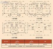 石门碧桂园5室2厅4卫251平方米户型图
