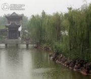 绿城雁鸣湖玫瑰园外景图