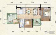 新鹏盛世临港2室2厅1卫67--79091平方米户型图
