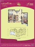 碧桂园凤凰城2室2厅1卫107平方米户型图