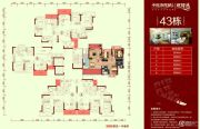 中恒海晖城48--88平方米户型图