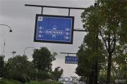 奥体・玫瑰园交通图