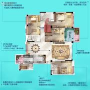 广州挂绿湖碧桂园7室2厅3卫256平方米户型图