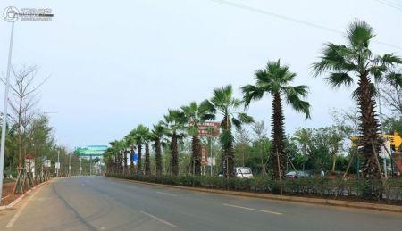 绿地文化城