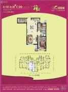 碧桂园凤凰城2室2厅1卫110平方米户型图