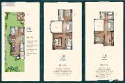 燕云小镇2室2厅4卫200平方米户型图
