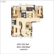 万景・三号院3室2厅2卫123平方米户型图