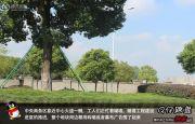 玉兰广场外景图