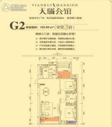 天瑞公馆2室2厅2卫102平方米户型图