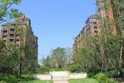 金世纪运河丽园实景图