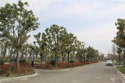 月湖雅苑实景图
