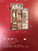 中央学府1室1厅1卫47平方米户型图
