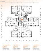 顺德碧桂园・桂澜山93--119平方米户型图