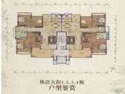 珠光流溪御景4室2厅2卫165平方米户型图