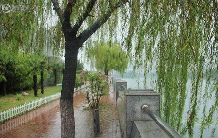 东城翡翠湾