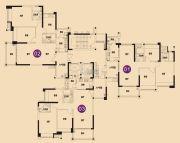 星港城市名都(商铺)102--111平方米户型图