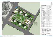 国博新城规划图
