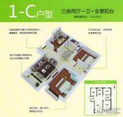 泰华・奥体花园3室2厅1卫110平方米户型图