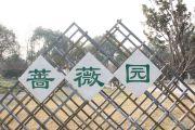 中海凤凰熙岸配套图