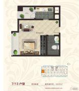 国宾府1室1厅1卫40--45平方米户型图