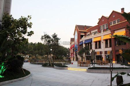 碧桂园凤凰城