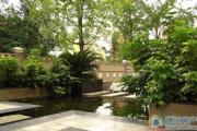 美洲花园E区实景图