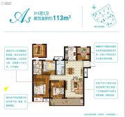 奥园黄金海岸4室2厅2卫113平方米户型图