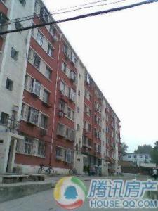 毛涤厂小区