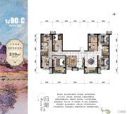 碧桂园莫奈的湖5室2厅2卫210平方米户型图