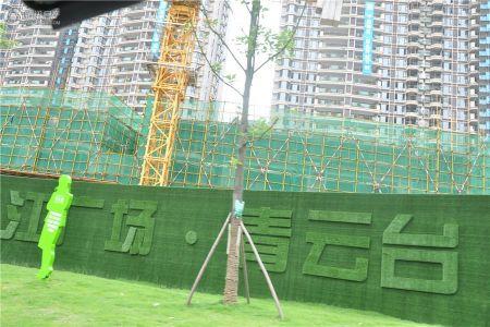珠江青云台
