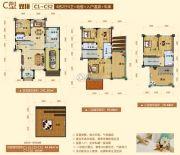 阳西温泉城367平方米户型图