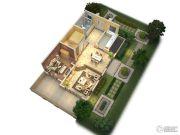 隆豪翡翠星城325平方米户型图