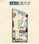 惠丰广场1室1厅1卫48平方米户型图