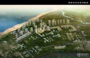 傲景观澜九龙湾规划图