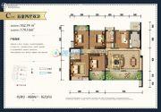玫瑰湾5室2厅2卫162平方米户型图