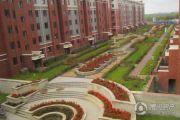 哈东城市公元外景图