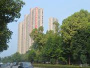 尚格・岭秀天下外景图