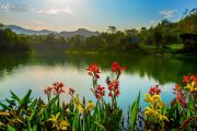 碧桂园湖光山色实景图