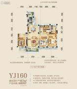 襄阳碧桂园4室2厅2卫167平方米户型图