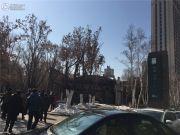 辰能溪树庭院(南区)外景图