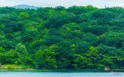 瑞安翠湖山配套图