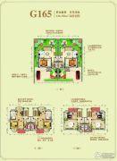 随州碧桂园6室8厅8卫230--250平方米户型图
